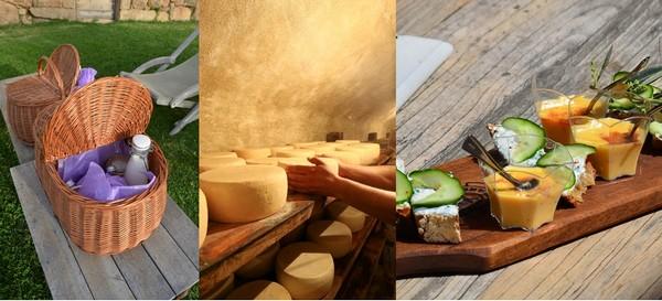 """""""Nous voulons développer l'exploitation agricole. La fromagerie est faite, nous avons le moulin à huile, la distillerie et dans l'avenir nous aurons la miellerie"""" explique Valérie Canarellli. Crédit photo David Raynal/Camille Moirenc."""