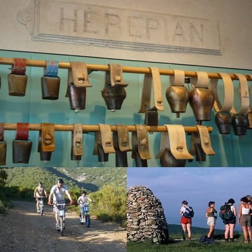 En haut : Musee de la cloche et des sonnailles Herepian; © Julie Noclercq; En bas : Balades en trottinette ou vélo électrique;  © O.T. Caroux; A droite : Les Marcheurs du Caroux © O.T. Caroux;