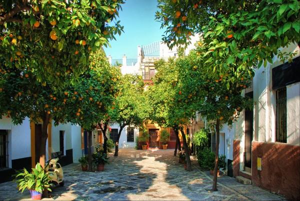 Séville , ici à Santa Cruz, vous accueille dans la douceur de ses jardins d'orangers, la fraîcheur de ses patios débordants de fleurs  © Lindigomag/Pixabay.com