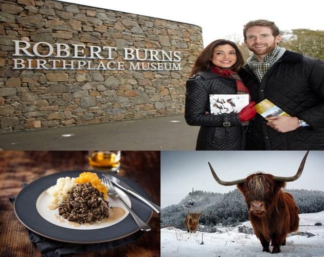 Musée dédié à Robert Burns ; Le traditionnel plat de haggis ; Les magnifiques vaches écossaises font partie du paysage hivernal ; © www.visitscotland.com/fr