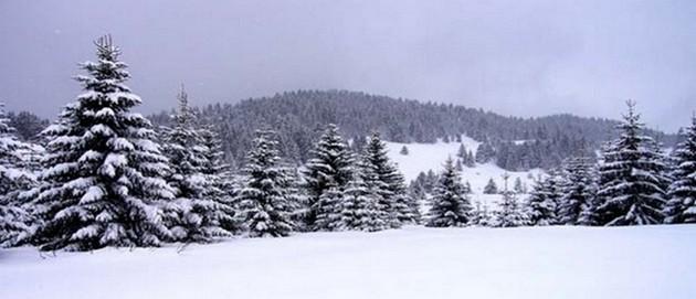 Le décor féérique, pour le plaisir des skieurs, de la petite station de Rochesson. © Mairie de Rochesson.