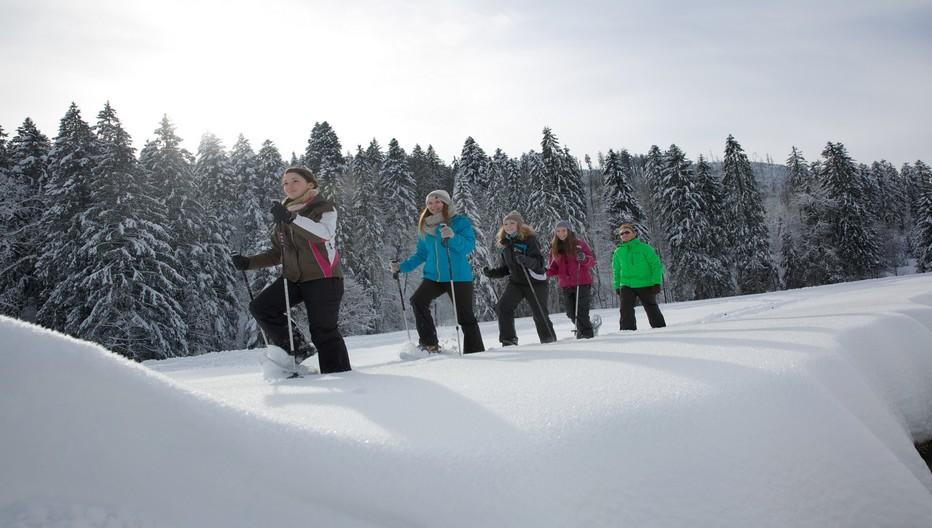 La région de Baiersbronn totalise 550 km de chemins balisés dont un tiers laissé à l'état naturel.©www.baiersbronn.de
