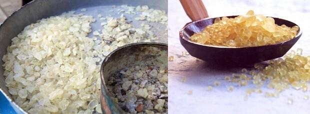 Le mastic est employé en pâtisserie, en confiserie, en cosmétique, pour ses qualités médico-pharmaceutiques, les soins dentaires, la fabrication de pommades et d'emplâtres, dans le domaine des beaux-arts ou pour la fabrication de liqueurs. Crédit photo D.R.
