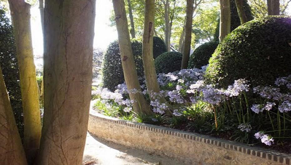 Mis à part les arbres centenaires de Madame Thébault, tous les végétaux ont été apportés : 35 000 ont été plantés sur 7 000 m². Essentiellement des ifs, des osmanthes, des houx, des fusains, des buis. Les fleurs sont rares, quelques agapanthes bleues, des camélias et des azalée.  © Les Jardins  d'Etretat