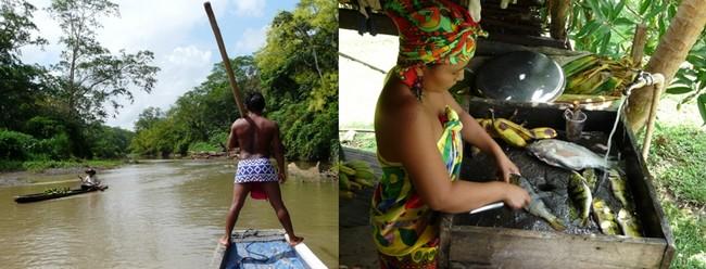 balade en pirogue sur le rio Chagres  qui permet de passer une journée au village des Embera Quera, une communauté indienne très accueillante chez qui vous pouvez déjeuner de poisson frais pêché, de fruits et de bananes plantain.© C.Gary