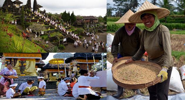 A Bali, seule île de l'archipel à être majoritairement hindouiste les cérémonies rythment la vie des habitants. Copyright David Raynal et O.T.Wonderful Indonesia