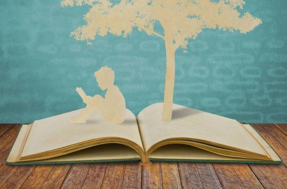 Des livres pour Noël..Copyright lindigomag/Pixabay
