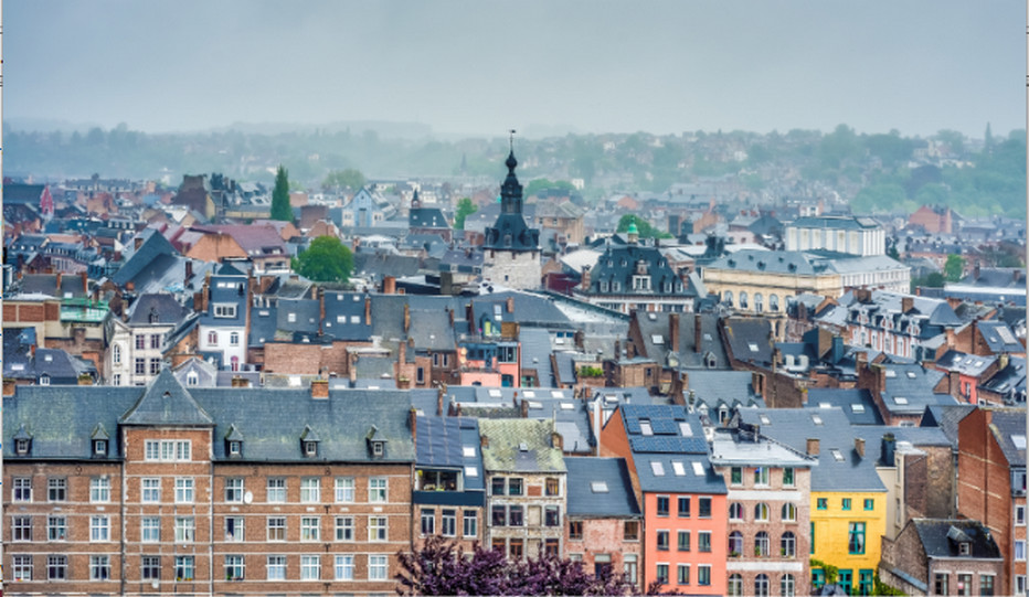 La ville de Namur, la capitale wallonne vue de la citadelle. Crédit photo Anibal Trejo.