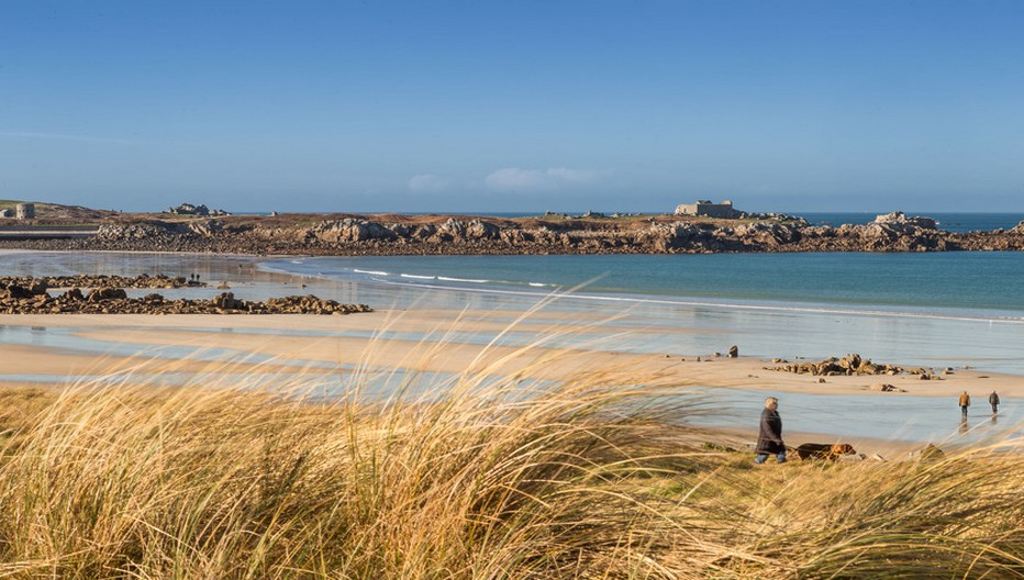 La côte Ouest dévoile des grandes plages entourées de dunes bordées d'herbes marines.  Copyright visitguernesey