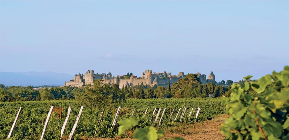 Les vignobles Foncalieu au pied de la cité de Carcassonne. @ DR