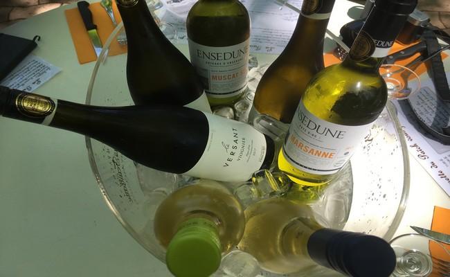 Des territoires viticoles qui fleurent bon le Sud de France ou le Midi; @ R.Bayon