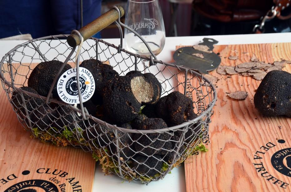 La truffe du Périgord présentée par Francis Delpey... @ David Raynal