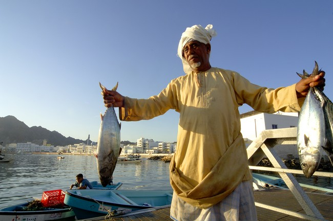 Marché aux poissons de Muttrah. @ OT Oman