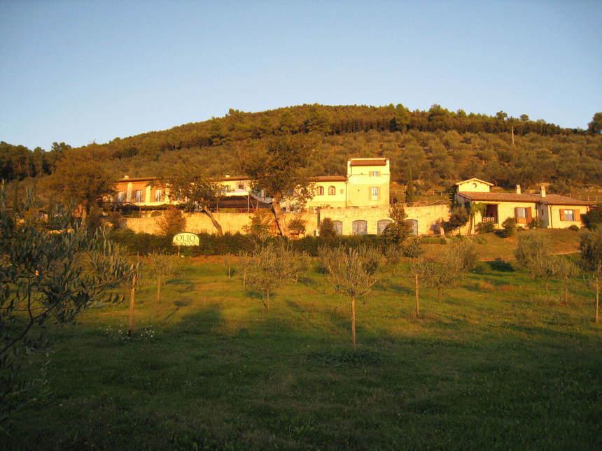 domaine Monini en Ombrie