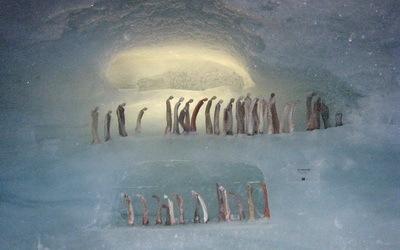 Galerie de glace dans le glacier des Fées