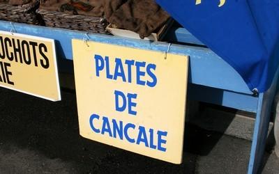 Cancale est l'une des grandes capitales de l'huître.