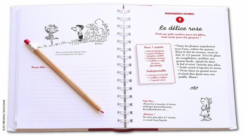 livre ouvert des recettes du Petit Nicolas