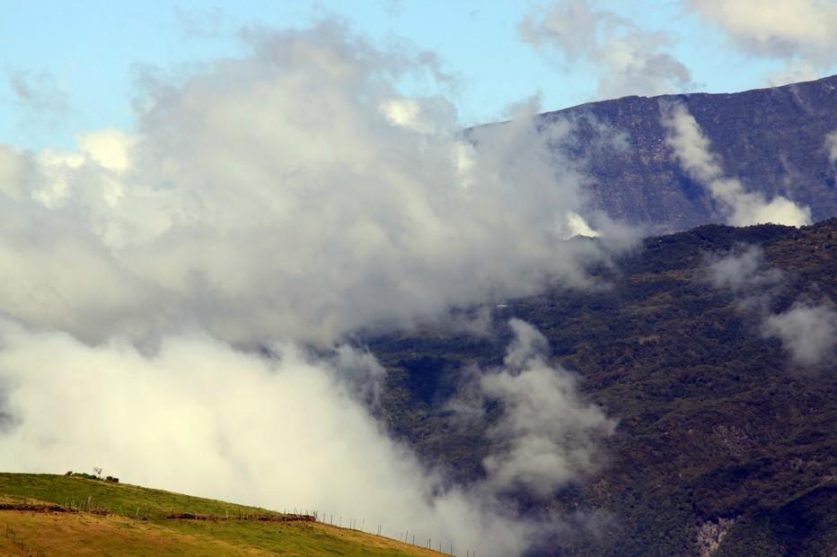 La Réunion : Un peu de verdure et vue sur un paysage lunaire. @ David Raynal