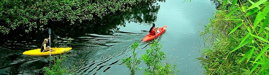 De nombreux voyageurs viennent en Thaïlande parce qu'ils veulent participer à l'écotourisme et même à des activités qui favorisent la préservation de la durabilité culturelle et naturelle; @tourismevert.com