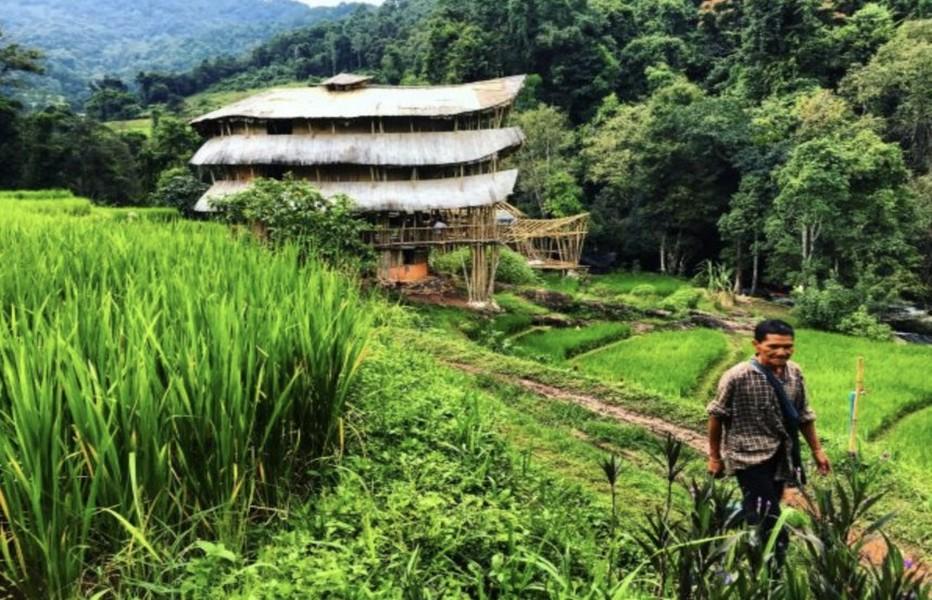 Création de l'Association Thaïlandaise d'Écotourisme et de Tourisme d'Aventure (TEATA) depuis 1997, dans le but de créer un réseau de voyagistes partageant les mêmes idées et d'établir des normes élevées en matière de nature, d'aventure et d'éco-tourisme; @tourismevert.com