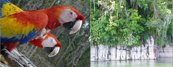 De gauche à droite. Les surprises d'une balade dans le parc naturel du lac Yojoa ;et  le matin sur la lac Yojoa @ C.G.