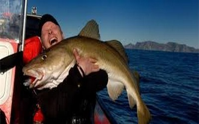 Pêcheur de Skrei dans la Mer de Barens (Norvège)