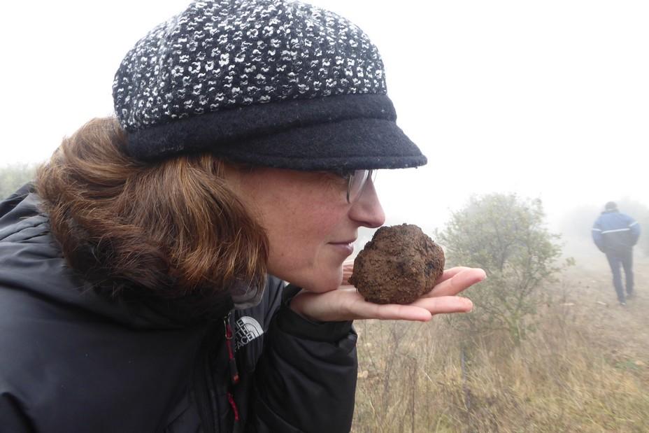 L'art de caver la truffe. @ C.Gary