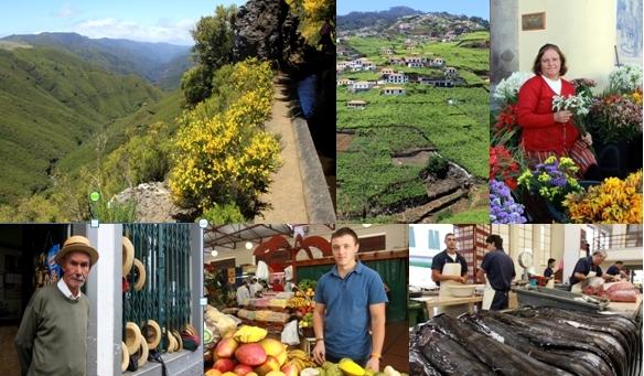 Promenade sur le sentier des levadas, vignoble de Madère sur la côte sud, marchande de fleurs au marché de Funchal, conducteur de panier en osier avec canotier, vendeurs de fuits et de poissons/David Raynal