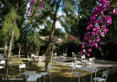 """Jardins du restaurant """" la Bonne Chute"""""""