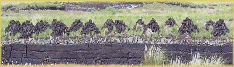 Les tourbières  (photo boulingeurs.com)