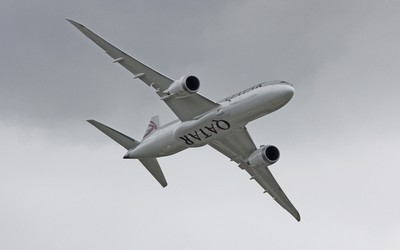 Démonstration du Dreamliner au Salon Aéronautique de Farnborough  (Photo aeroweb-fr.net)