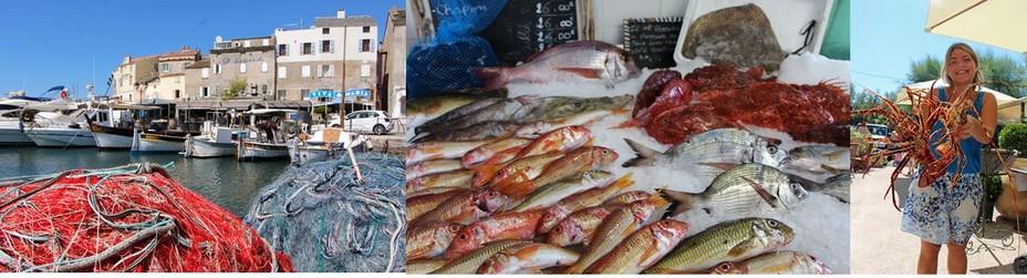 De gauche à droite : St-Florent et la richesse de la pêche dans le cap Corse avec une grande variété de poissons et les belles langoustes de Centuri. @ David Raynal