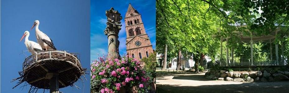 De gauche à droite : Retour des cigognes au printemps @ OT Munster; temple protestant et la fontaine au lion  @ Samuel Wernain ;  jardin anglais conçu par les Hartmann, la famille d'industriels du textile locale qui a redynamisé la ville au siècle dernier.. @ OT Munster