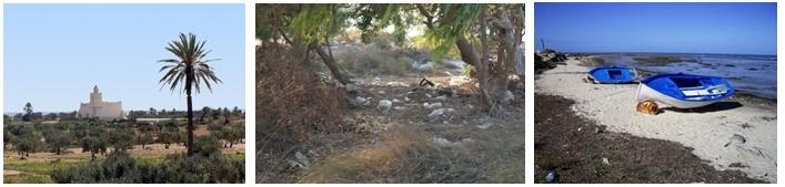 Campagne à Djerba,  paysage dénaturé, barques avant la pêche