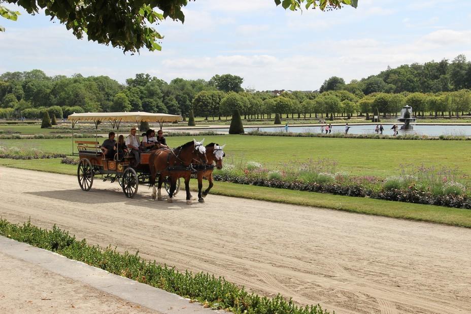Promenade commentée du parc dans une calèche tirée par deux chevaux. Crédit photo Virginie Marty.