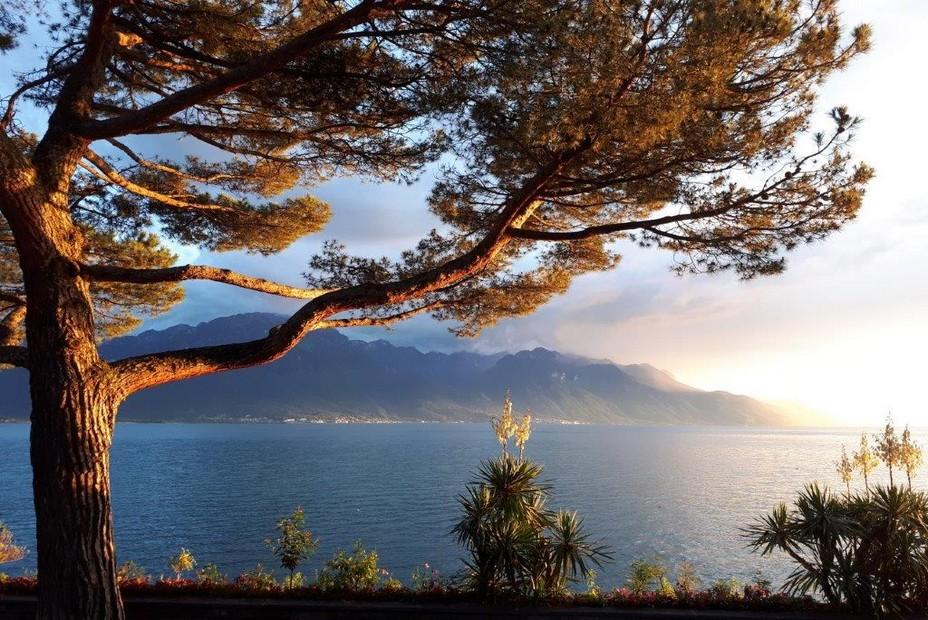 Riviera vaudoise la rive française vue depuis le village de Chardonne. ©Degon