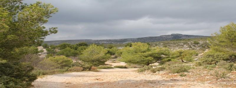Sentier Marcel Pagnol au loin la colline le Garlaban d'une hauteur de 714 m