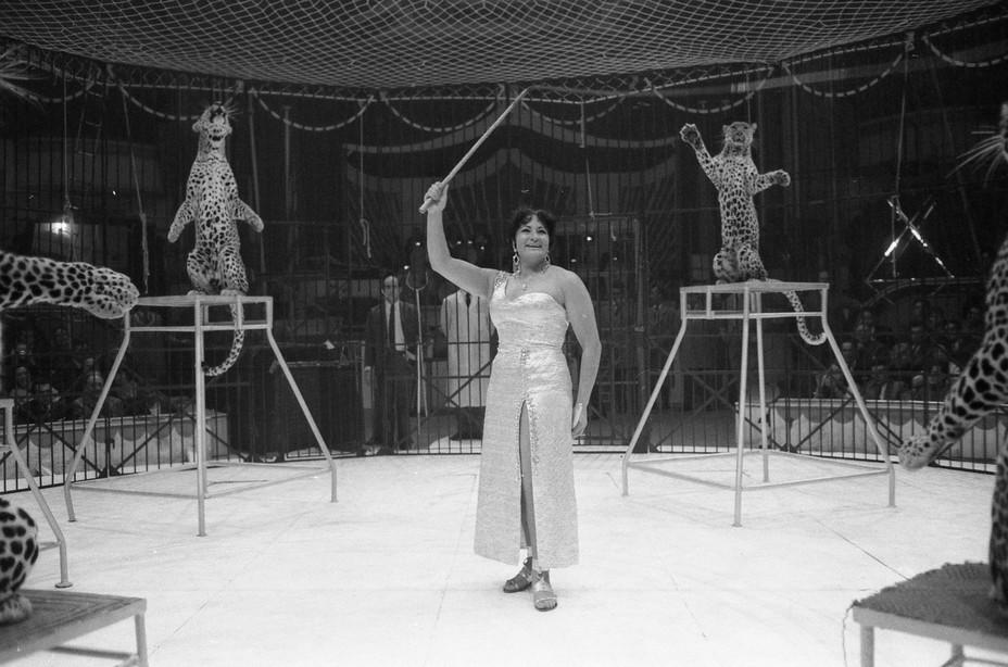 En 1967, le monde de la piste aux étoiles pour Arlette et ses panthères. ©Fabrice Vallon/Cirque Arlette Gruss