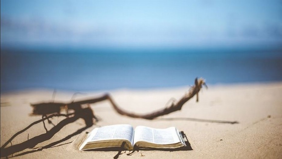 Lire c'est voyager....des livres à offrir... @Pixabay/Lidigomag
