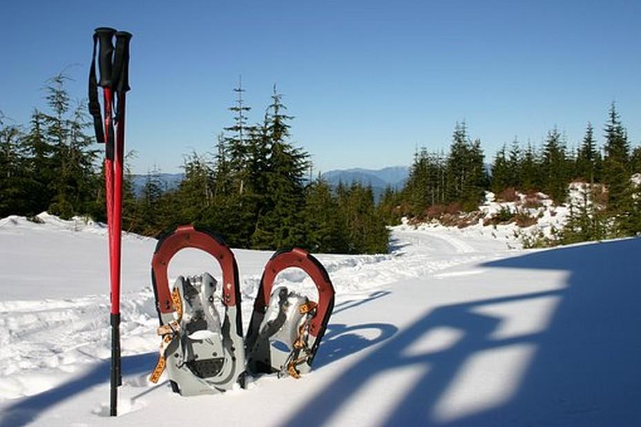 Un grand nombre d'offres sont disponibles sur www.Ski-Express.com, premier comparateur de séjours au ski.  @ Pixabay/Lindigomag