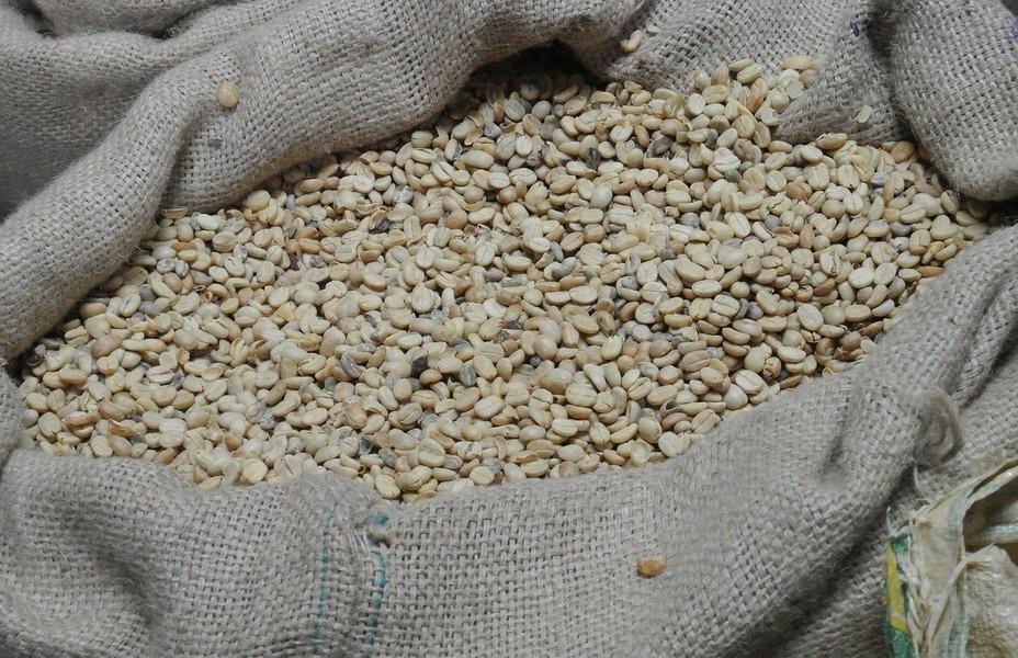 La caféiculture est considérée comme une activité économique fondatrice de l'Histoire de l'Amérique centrale @ DR.