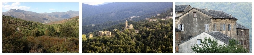 Village de la Castagniccia, la chataîgneraie de la Haute-Corse (David Raynal).