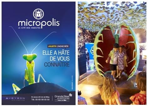 2/ Plante carnivore (copyright micropolis-aveyron.com)