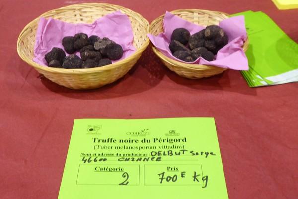 Sélection des truffes noires Melanosporum lors des Foires grasses. @ C.Gary