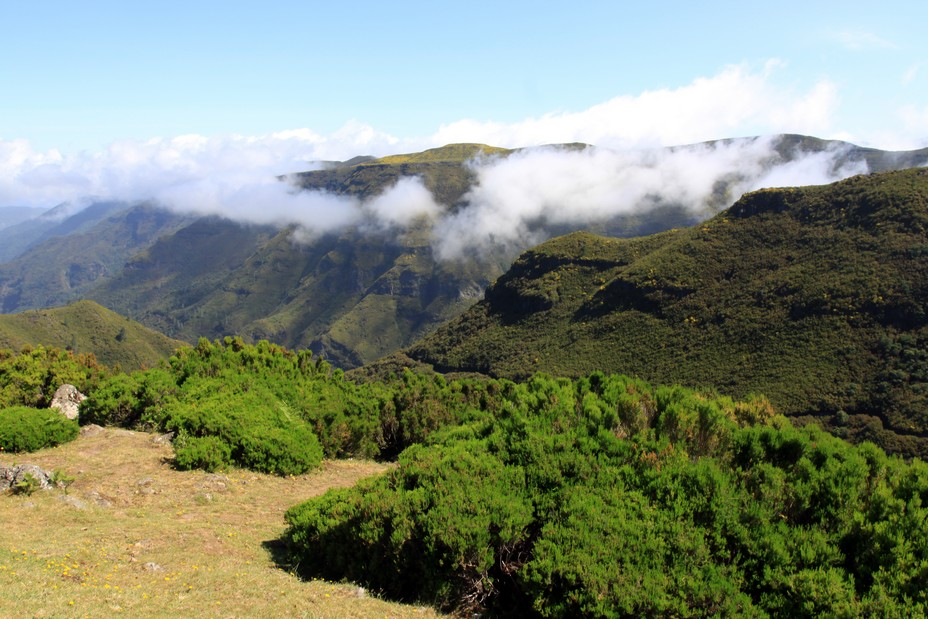 Le parc naturel couvre environ 2/3 de la superficie de l'île et se divise en réserves naturelles partielles ou intégrales, en paysages protégés et en zones de loisir. - @ David Raynal