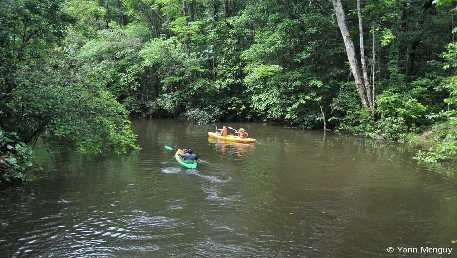 Balade sur le fleuve  en pleine forêt amazonienne guyanaise (photo Yann Menguy)