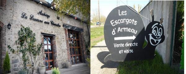 Lucarne aux chouettes © La Lucarne aux Chouettes à Villeneuve ; Escargots de Bourgogne d'Armeau entre Villeneuve et Joigny @ C.Gary