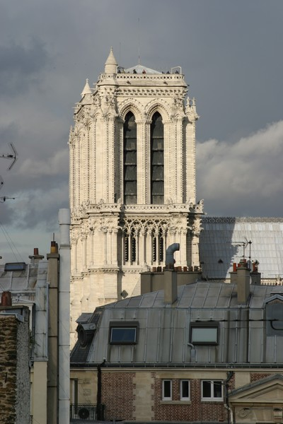 Tour sud de Notre-Dame @ David Raynal.