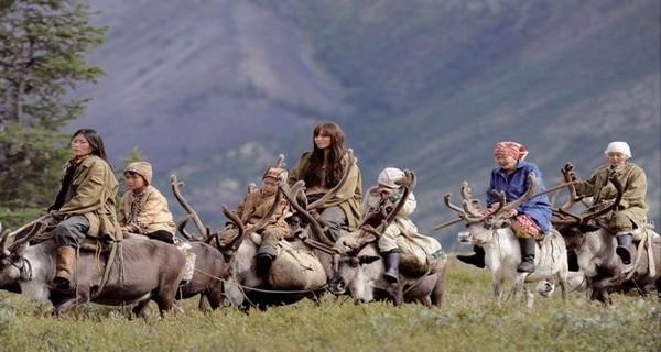 Peuple des fils de Noum  : Les Nénètses, surnommés les Princes de la Toundra car ils règnent sur les steppes et forêts sibériennes, seraient originaires des Monts Saïan de la Sibérie occidentale. (Photo D.R.)