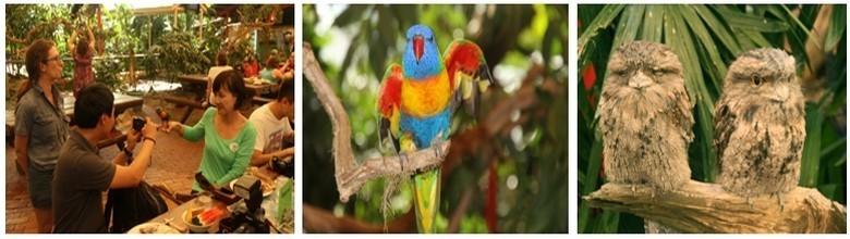 Wildlife habitat abrite près de 200 espèce d'animaux qu'il es possible d'observer dans leur environnement ©Patrick Cros